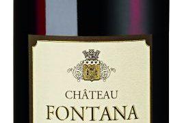 Chateau Fontana