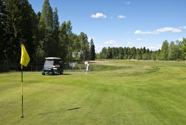 DomleHerrgard_golf_6-1