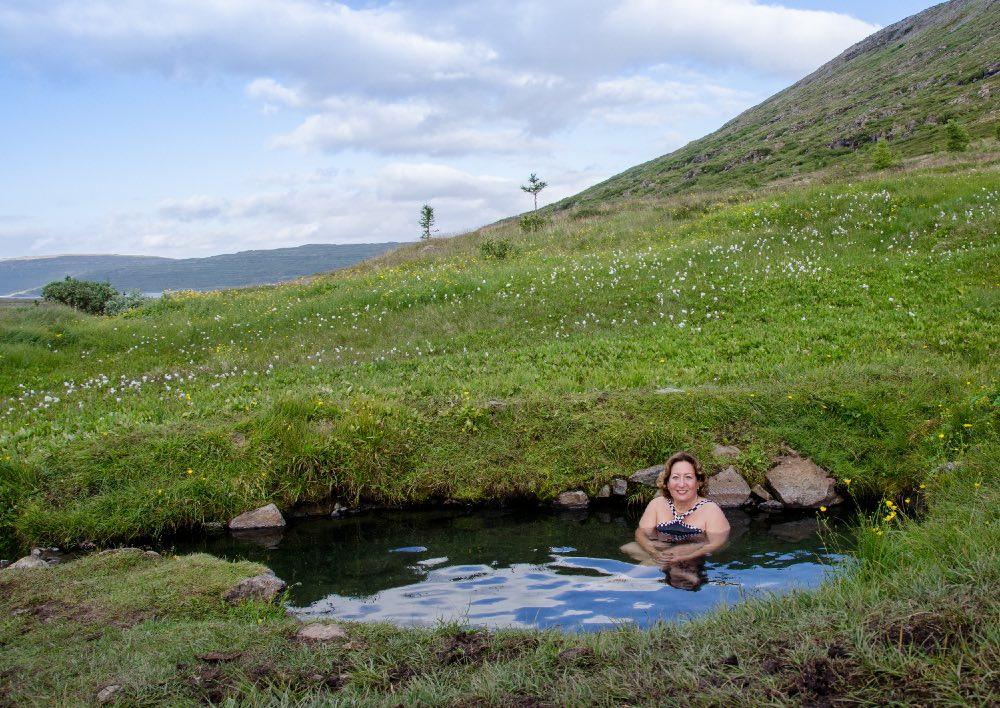 Island - Heydalur hot spring (15A2790)