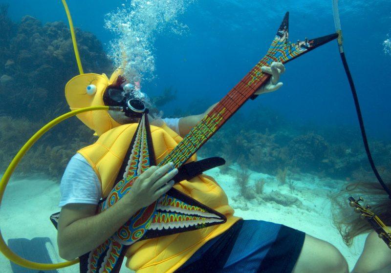 Fotograf: Bob Care/Florida Keys News Bureau/HO